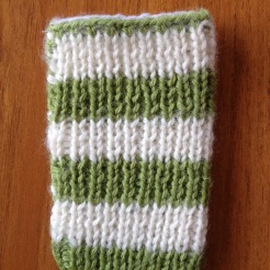 Custom ipod touch case